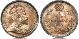 Edward VII 5 Cents 1903 MS66+ PCGS, London mint, KM13. A conditional gem with subtle pastel hues that permeate the surfaces, full radiating luster, an...