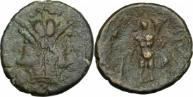 Greek Italy. Southern Apulia, Uxentum. AE 22.5 mm. (As), c. 125-90 BC. D/ Janiform helmeted heads of Athena. R/ OZAN. Herakles standing facing, holdin...