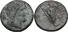 Sicily. Syracuse. Hiketas (287-278 BC). AE Unit. D/ Head of Zeus Hellanios right. R/ Eagle to left. CNS 168. AE. g. 10.81 mm. 24.00 VF.