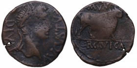 Augusto (27 aC-14 dC). Ercavica. As. AB-1277. Ag. MBC. Est.100.