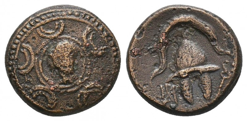 Kings of Macedon, Anonymous, 323 - 275 BC