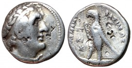 Ptolemaic Kings of Egypt, Ptolemy II, 285 - 246 BC, Silver Tetradrachm