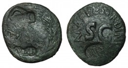 Augustus, 27 BC - 14 AD, AE As, With Countermarks