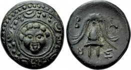 KINGS OF MACEDON. Philip III Arrhidaios (323-317 BC). Ae 1/2 Unit. Salamis.