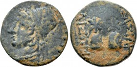 KINGS OF SOPHENE. Arsames I (Circa 255-225 BC). Ae.
