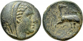 IONIA. Ephesos (as Arsinoeia). Ae (Circa 290-281 BC). Uncertain magistrate.