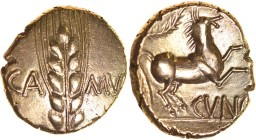 Cunobelius Wild A, Central Stalk. Sills class 3a, dies 26/39. c.AD 8-41. Gold stater. 17mm. 5.46g. Ear of barley with central stalk and long whiskers,...