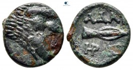 Kings of Thrace. Seleukid. Adaios circa 253-243 BC. Bronze Æ