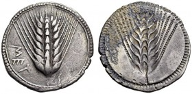 LUCANIA, Metapontum. Circa 540-510 BC. Stater (Silver, 27mm, 8.15 g 12). ΜΕΤ Ear of barley with eight grains; around, border of dots within two concen...