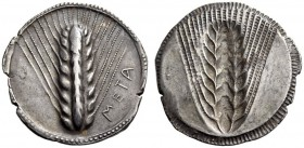 LUCANIA, Metapontum. Circa 540-510 BC. Stater (Silver, 29mm, 8.17 g 12). ΜΕΤΑ Ear of barley with eight grains; around, border of dots within two conce...