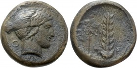 LUCANIA. Metapontion. Ae Obol (Circa 400-350 BC).