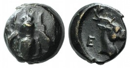 Ionia, Ephesos, c. 405-390 BC. Æ (6.5mm, 0.66g, 12h). Bee. R/ Head of stag r. SNG Kayhan 147-88; SNG München 34. Dark patina, Good VF