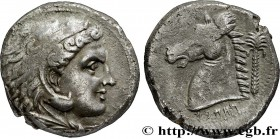 SICILY - SICULO-PUNIC - ENTELLA Type : Tétradrachme  Date : c. 325 AC.  Mint name / Town : Machanat (Le Camp), Entella  Metal : silver  Diameter : 25,...
