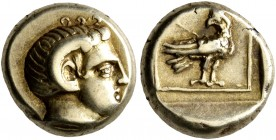 LESBOS. Mytilene. Circa 377-326 BC. Hekte (Electrum, 10 mm, 2.53 g, 3 h). Head of Apollo Karneios to right, wearing horn of Ammon over his ear. Rev. E...
