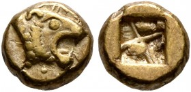 IONIA. Uncertain. Circa 600-550 BC. Myshemihekte – 1/24 Stater (Electrum, 6 mm, 0.57 g), Lydo-Milesian standard. Head of a roaring lion to right. Rev....
