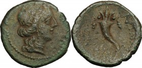 Sicily. Aitna. Roman Rule. AE 17mm, after 212 BC. D/ Head of Persephone right. R/ Cornucopiae. CNS III, 12. AE. g. 2.63 mm. 17.00 Light brown and gree...