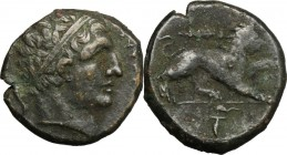 Sicily. Syracuse. Agathokles (317-289 BC). AE 22mm. D/ Head of youthful Herakles right, wearing taenia; behind, bow. R/ Lion advancing right, raising ...