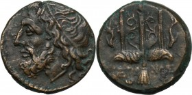Sicily. Syracuse. Hieron II (275-215 BC). AE 18 mm. D/ Diademed head of Poseidon left. R/ ΙΕΡΩΝΟΣ. Ornamented trident; dolphins to either side,. CNS I...
