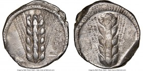 LUCANIA. Metapontum. Ca. 470-440 BC. AR stater (20mm, 7.45 gm, 12h). NGC XF 4/5 - 3/5. META (retrograde), five-grained barley ear; dotted border on ra...