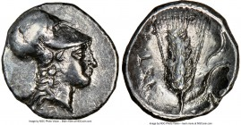 LUCANIA. Metapontum. Ca. 325-275 BC. AR diobol (12mm, 12h). NGC XF, brushed. Head of Athena right, wearing Corinthian helmet pushed back on head / MET...