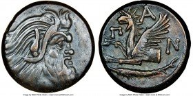 CIMMERIAN BOSPORUS. Panticapaeum. 4th century BC. AE (22mm, 11h). NGC Choice VF. Head of bearded Pan right / Π-A-N, forepart of griffin left, sturgeon...