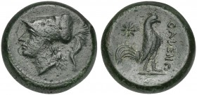Northern Campania, Cales, ca. 265-240 BC; AE (g 6,56; mm 18; h 9); Helmeted head of Athena l. Rv. CALENO, Cock standing r.; star to l. Sambon 916; HNI...