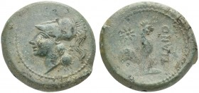 Northern Campania, Teanum Sidicinum, ac. 265-240 BC; AE (g 6,95; mm 22; h 3); Helmeted head of Athena l. Rv. TIANO, Cock standing r.; star above. HNIt...