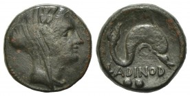 Eastern Italy, Larinum, Biunx, ca. 210-175 BC. AE (g 5.84, mm 17, h 10). Veiled and wreathed head of female (Thetis?) r.; Rv. LADINOD, Dolphin r.; two...