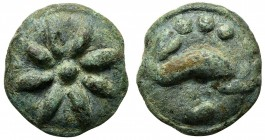 Northern Apulia, Luceria, Teruncius, ca. 217-212 BC. Cast AE (g 27,17; mm 27). Star of eight rays on a raised disk; Rv. Dolphin r.; three pellets abov...