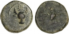 ASIA MINOR? Uncertain. Ae (Circa 2-1th centuries?). Obv: Bucranium, with star above. Rev: Owl standing facing, wings spread, on palm branch; monogram ...