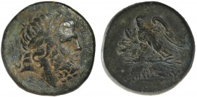 PONTOS. Amisos. Time of Mithradates VI Eupator (Circa 100-85 BC). Ae. Obv: Laureate head of Zeus right. Rev: AMIΣOY. Eagle, head right, with wings spr...