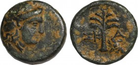 TROAS, Skamandreia Ae. (350-300 BC). Obv: Head of mountain-nymph Ide right Rev: Fir-tree; ΣΚ-Α, boar's head to right. Rare. Condition: Extremely Fine....