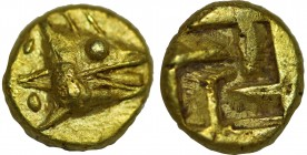 MYSIA. Kyzikos. EL 1/24 Stater (Circa 600-550 BC). Obv: Head of tunny right; two pellets to left. Rev: . Cf. Nomisma VII 9 (1/12 stater); Hurter & Lie...