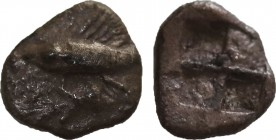MYSIA. Kyzikos. Hemibol (Circa 500 BC). Obv: Tunny left. Rev: Quadripartite incuse square. SNG Tübingen 2210. Condition: Extremely fine. Weight: 0.45 ...