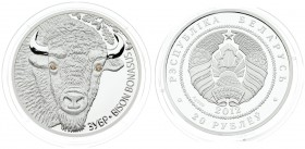Belarus 20 Roubles 2012. Averse: National arms. Reverse: Bison head facing; two crystal eyes. Silver. KM 420. With capsule