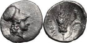 Greek Italy. Southern Lucania, Metapontum. AR Diobol, 325-280 BC. D/ Head of Athena right, helmeted. R/ Ear of barley; to right, cornucopiae. HN Italy...