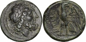 Greek Italy. Bruttium, The Brettii. AE Unit, 211-208 BC. D/ Head of Zeus right, laureate; behind, dagger. R/ Eagle standing left on thunderbolt, head ...
