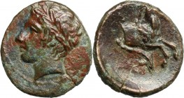 Sicily. Panormos as Ziz. AE 14 mm, 1st half of 4th century-260 BC. D/ Head of Apollo left, laureate. R/ Forepart of horse right; below, dolphin. CNS I...