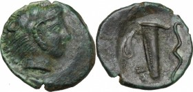 Sicily. Selinos. AE Hemilitron, 415-409 BC. D/ Head of Herakles right, wearing lion's skin. R/ Quiver and bow. CNS I, 11. AE. g. 3.31 mm. 17.00 VF.
