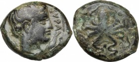 Sicily. Syracuse. End of Second Democracy and Dionysos I. AE 16 mm, after 425 BC. D/ Head right; before and behind, dolphin. R/ Octopus, surrounded by...