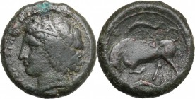 Sicily. Syracuse. Agathokles (317-289 BC). AE 22 mm. D/ Head of Kore left, wearing wreath. R/ Bull butting left; above and below, dolphin. CNS II, 96....