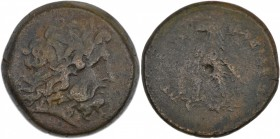 Ptolemaic kingdom of Egypt. Ptolemy III Euergetes 246-222 BC. Æ Obol (23mm, 12.25 g, 11h). Tyre mint. Diademed head of Zeus Ammon right / Eagle with c...