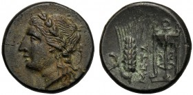Lucania, Bronze, Metapontion, c. 300-250 BC AE (g 2,97 mm 16 h 6) Laureate head of Apollo l., Rv. META, barley-ear with leaf to l. at r., tripod. John...