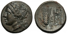 Lucania, Bronze, Metapontion, c. 300-250 BC AE (g 2,98 mm 14 h 3) Laureate head of Apollo l., Rv. META, barley-ear with leaf to l. at r., tripod. John...