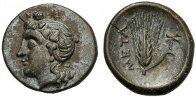 Lucania, Bronze, Metapontion, c. 300-250 BC AE (g 2,98 mm 15 h 3) Head of Dionysos l., wearing ivy-wreath, Rv. META, barley-ear with leaf to r. at r.,...