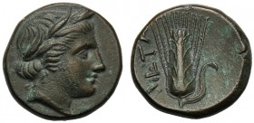Lucania, Bronze, Metapontion, c. 300-250 BC AE (g 2,71 mm 13 h 8) Head of Demeter r., wearing barley-wreath and pendant earring, Rv. META, barley-ear ...