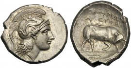 Lucania, Distater (EYΦA/EYΦAN group), Thourioi, c. 350-300 BC AR (g 15,62 mm 29 h 9) Head of Athena r., wearing crested Attic helmet, decorated with S...