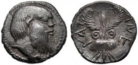 Sicily, Litra, Katane, c. 460 BC AR (g 0,86 mm 10 h 7) Head of Satyr r., dotted border, Rv. KAT-ANE, winged thunderbolt at sides, two shields. SNG Cop...
