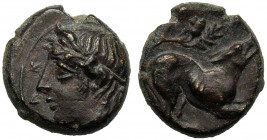 Sicily, Onkia, Piakos, c. 425-420 BC AE (g 0,93 mm 9 h 1) ΠIAK, horned head of river god l., Rv. Hound r. above, acorn with leaves. CNS III, n. 3 SNG ...