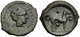 Sicily, Trias, Segesta, c. 420-400 BC AE (g 7,91 mm 20 h 7) ΣEΓEΣTAION, head of nymph Segesta r., wearing hairband, dotted border, Rv. Dog standing r....